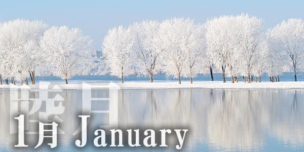 1月リンクトップ-1.jpg