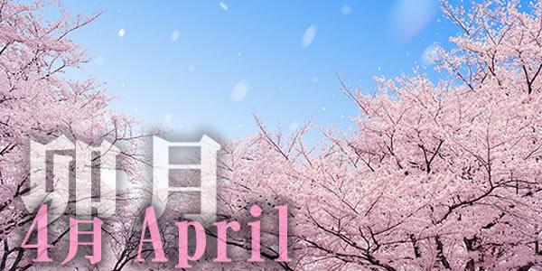 4月リンクトップ-1.jpg